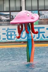 China Colorful Carp Spray Park Equipment / Kids' Water Playground supplier